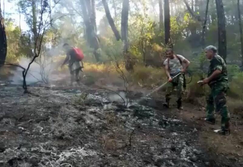Сотрудники МЧС Азербайджана участвуют в тушении лесных пожаров в Турции