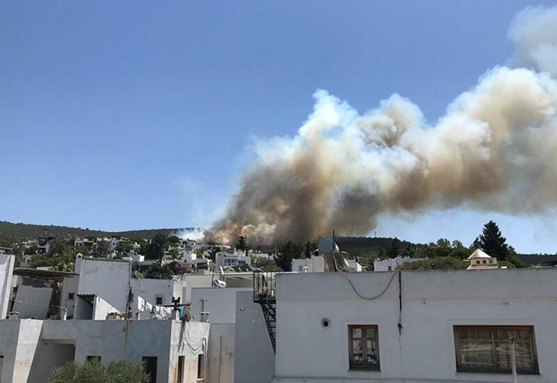 Постояльцы 3 отелей в Бодруме эвакуированы из-за нового лесного пожара
