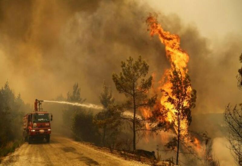 Из 101 пожара 91 взят под контроль