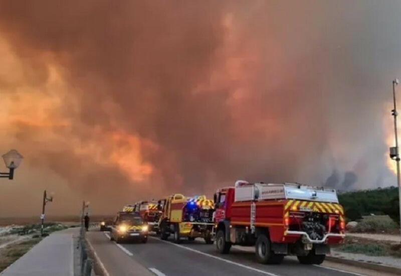 Возросло число жертв при лесных пожарах в Турции