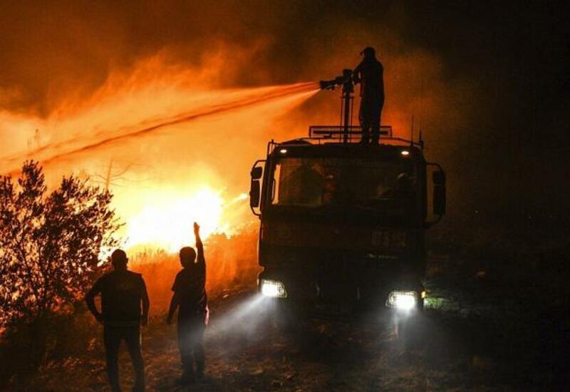 Лесные пожары на юге Европы