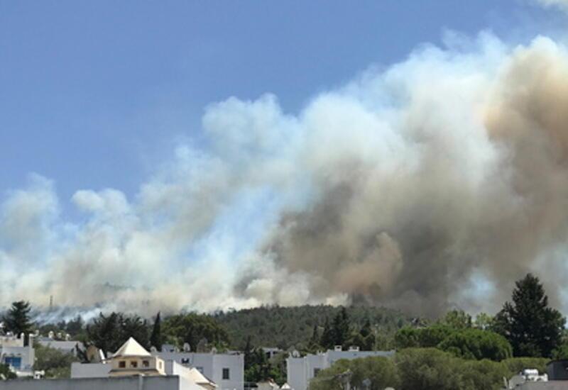 Мэр турецкого Бодрума подтвердил эвакуацию трех пятизвездочных отелей