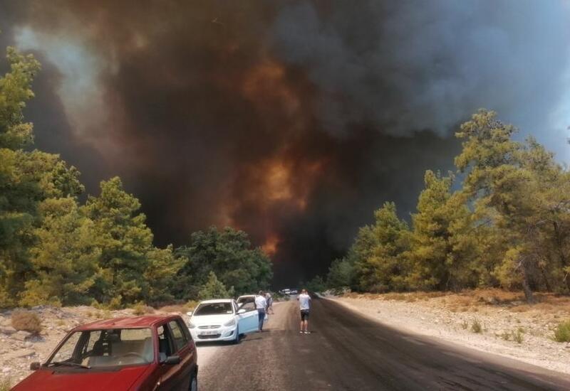 Лесные пожары в трех провинциях Турции взяты под контроль