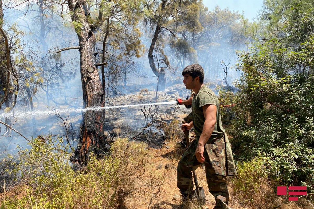 Азербайджанские пожарные предотвратили распространение огня в Турции
