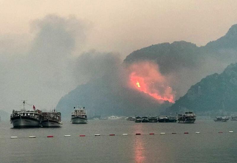 Лесные пожары в Турции приобрели техногенный характер