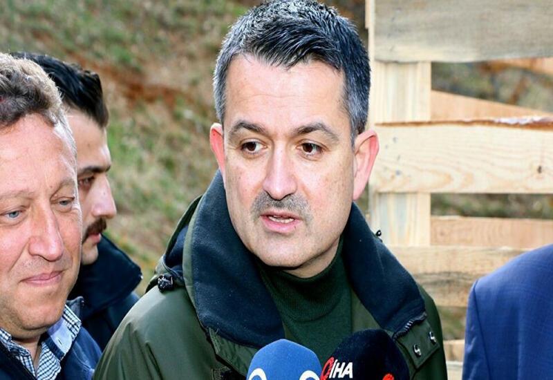 Пожары продолжаются в 7 регионах Турции