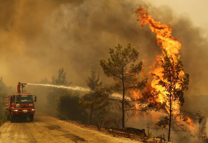 В Турции сообщили о взятии под контроль 125 лесных пожаров