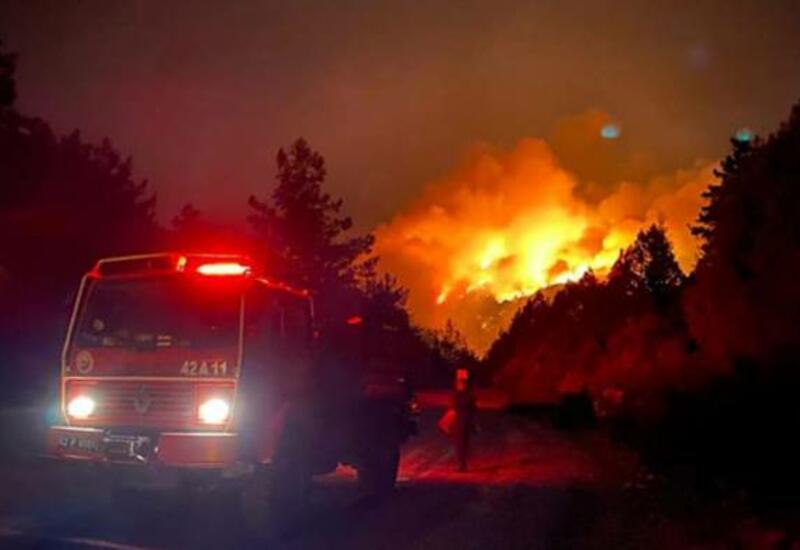 В Турции продолжается борьба с 13 очагами лесных пожаров в шести провинциях