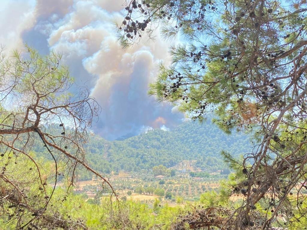Азербайджанские пожарные продолжают бороться с лесными пожарами в Турции