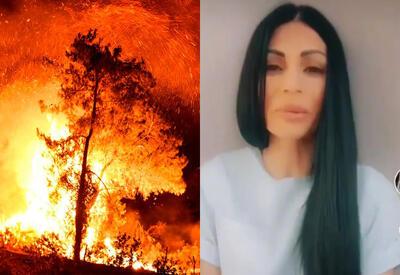 Эти люди мечтают видеть мир в огне  - больная психология армян,  радующихся пожарам в Турции - ВИДЕО