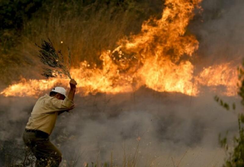 В Анталье на фоне приближения огня эвакуированы жители целого района