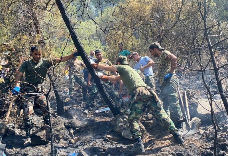 Новые кадры тушения лесных пожаров в Турции азербайджанскими пожарными