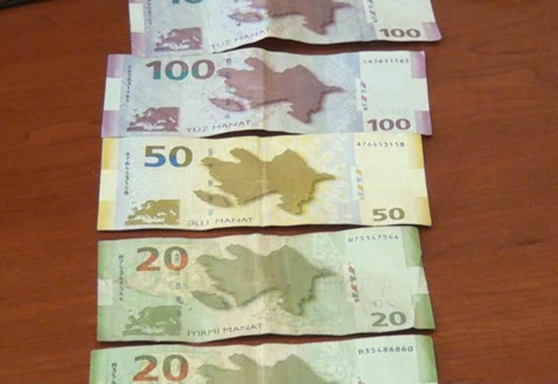 Задержан мужчина, похитивший крупную сумму денег из арендованного дома