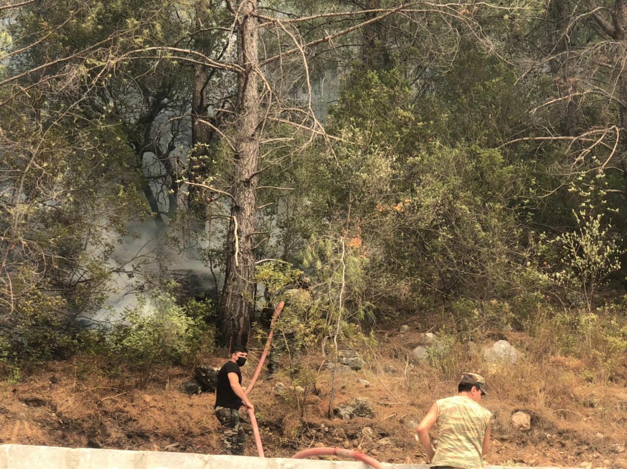 МЧС Азербайджана продолжают тушение лесных пожаров в Турции