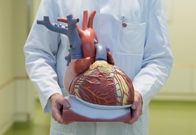 Найден способ предсказать смерть от сердечного приступа