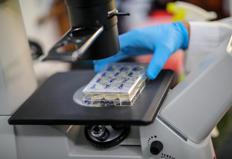 Ученые из Колумбии рассказали о «загадочном элементе» нового штамма коронавируса
