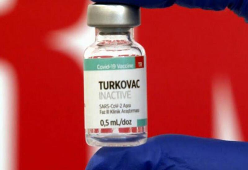 В Азербайджане может быть протестирована вакцина TURKOVAC