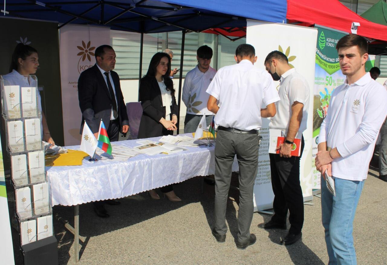Предприниматели в аграрной сфере были проинформированы о мерах поддержки Агентства по развитию МСБ Азербайджана