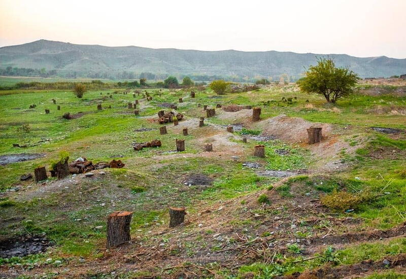 Уничтоженные армянами памятники природы Азербайджана восстановлению не подлежат