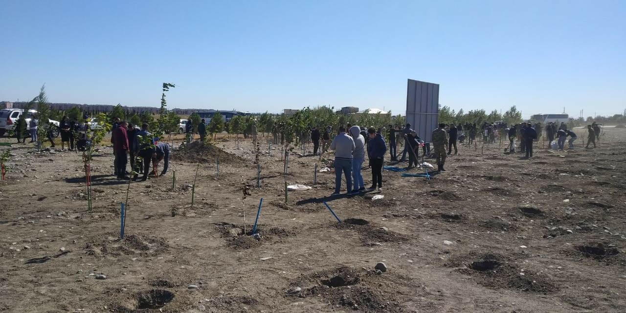 В Тертере заложен «Сад Родины – Парк шехидов»