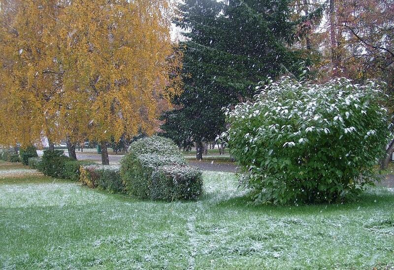Внезапный снегопад вызвал хаос в одном из российских городов