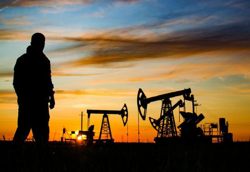 ОПЕК дала прогноз по добыче жидких углеводородов в Азербайджане