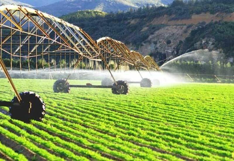 Японская компания готова работать в Карабахе в области сельского хозяйства