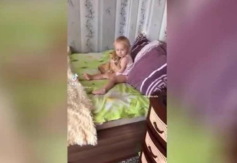 """""""Давай бояться вместе"""": реакция девочки и кота на пылесос умилила Сеть"""