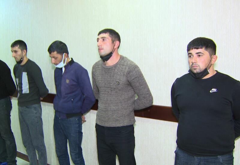 Задержаны организаторы собачьих боев