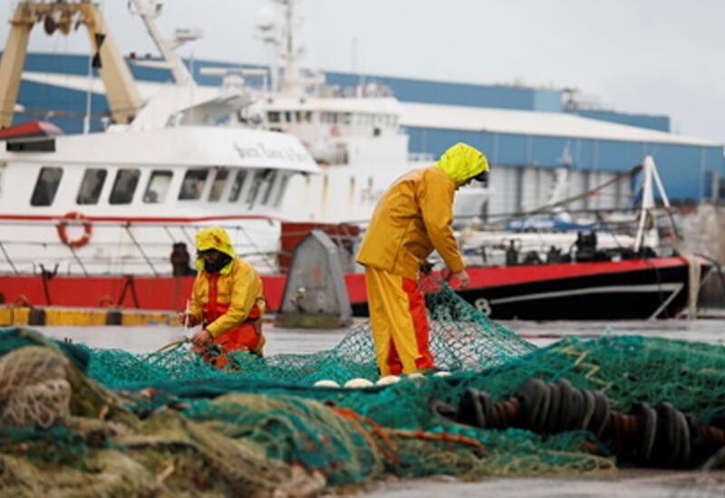 Европа начала шантажировать Великобританию из-за рыбы