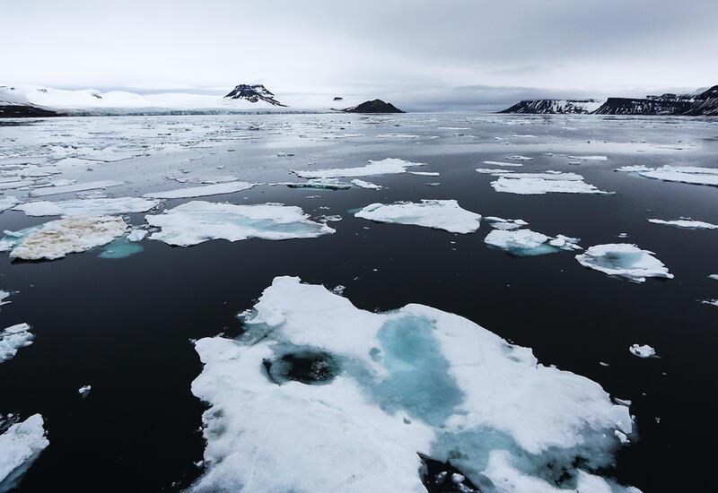 Ученые предупредили о «пробуждении» вирусов из-за таяния Арктики