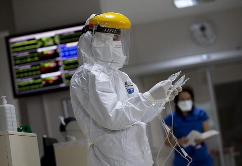 В Грузии за сутки выявили почти 5 тыс. случаев коронавируса