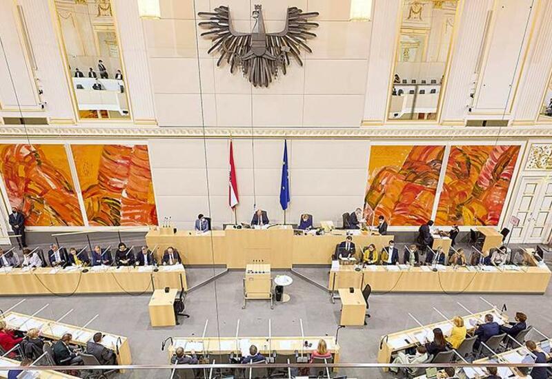 Австрийский депутат упала в обморок на заседании парламента