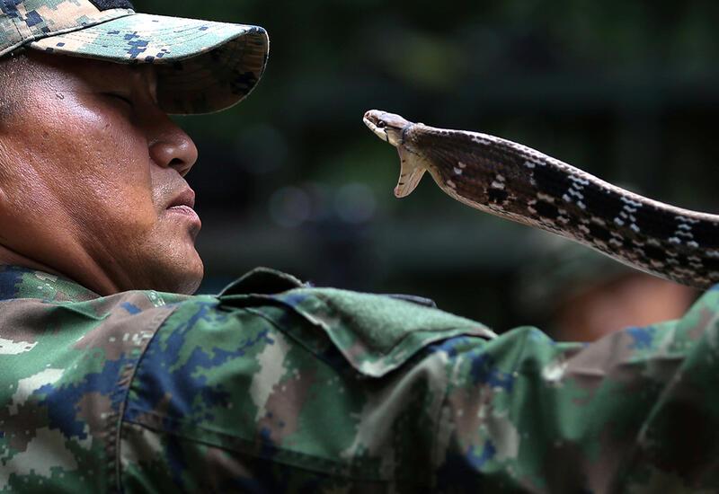 США и Таиланд планируют возобновить военные учения Cobra Gold