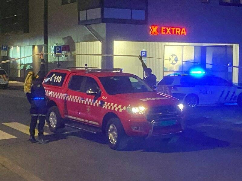 В Норвегии мужчина, вооружённый луком и стрелами, убил и ранил несколько человек