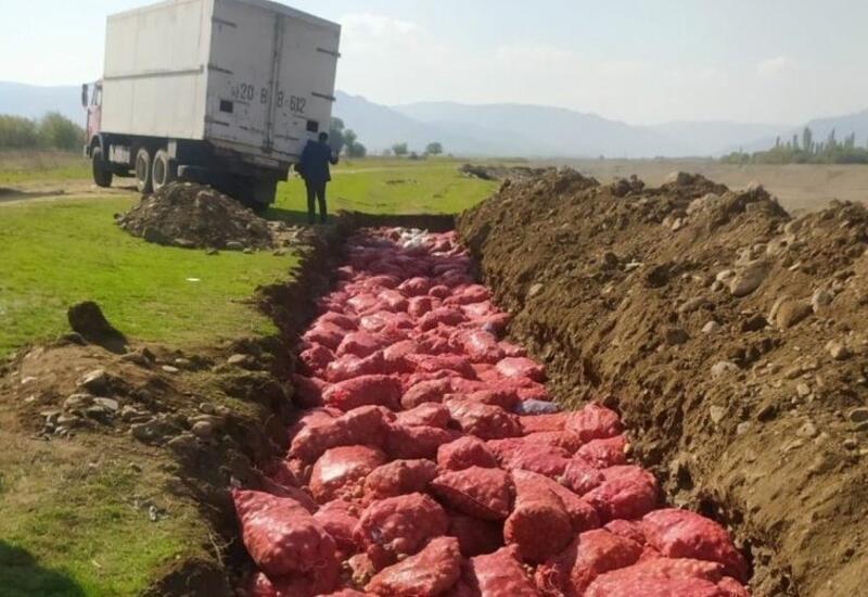 В Азербайджане утилизировано почти 70 тонн картофеля из России