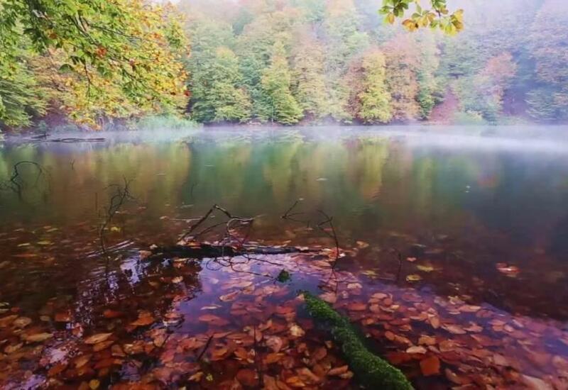 Красочная осень в Исмаиллы
