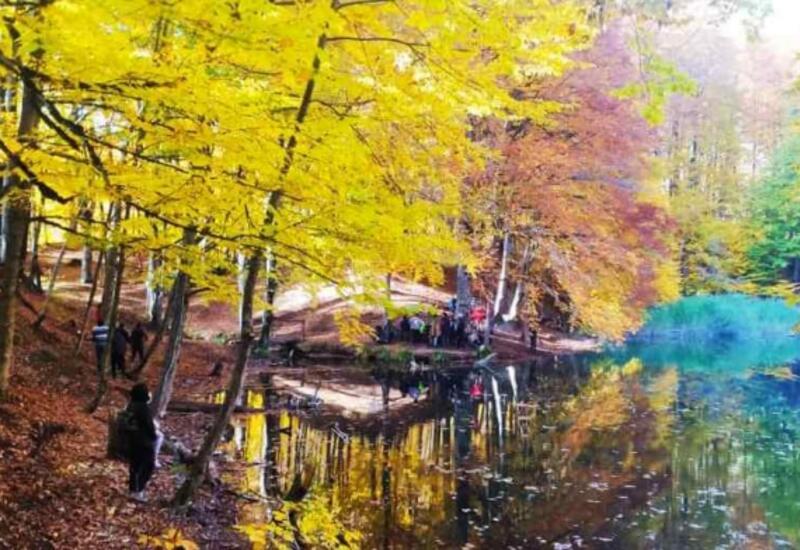 Осенняя красота национальных парков Азербайджана