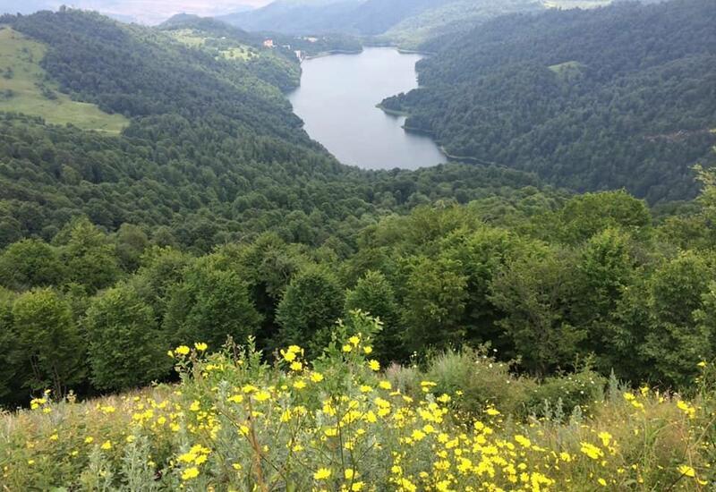Стало известно где в Карабахе создадут национальные парки