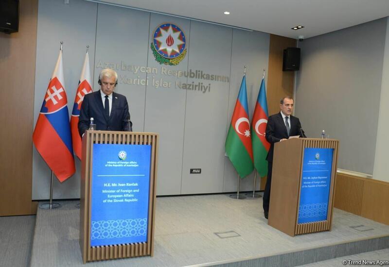 В Баку прошла совместная пресс-конференция глав МИД Азербайджана и Словакии