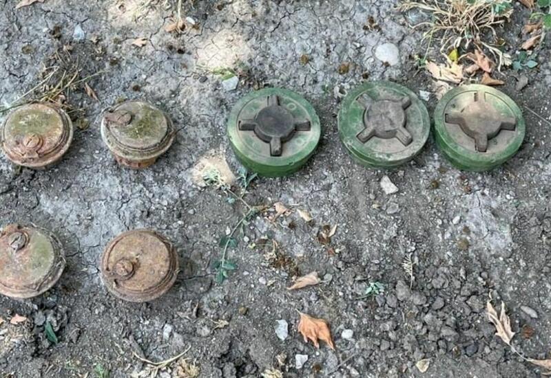 В Зангилане обнаружено около 60 тысяч патронов, брошенных армянами