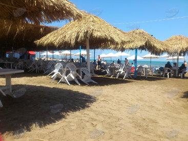 Какие пляжи предпочитают жители столицы – НАШ ОПРОС