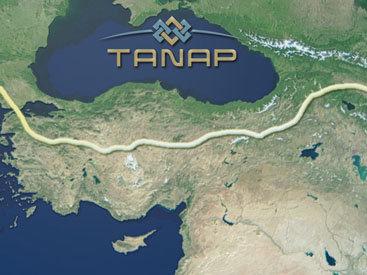 Турция упростит систему налогообложения для TANAP