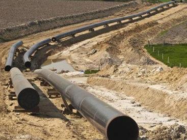 Эксперт об экобезопасности проекта Транскаспийского газопровода - ЕСТЬ МНЕНИЕ