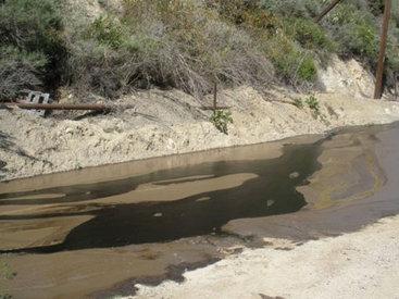 В крупный экологический проект вложат $4 млрд