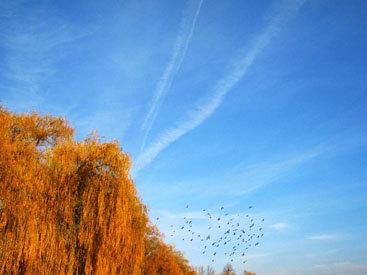 Заоблачная фантазия: такое обычное необычное небо – ФОТОСЕССИЯ