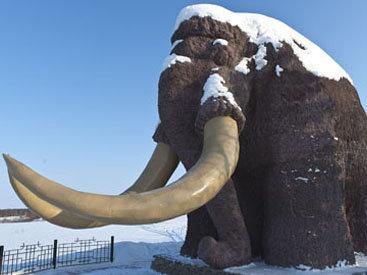 В России возрождают мамонтов
