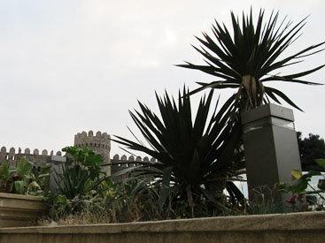 Неповторимая палитра: красота Баку и Астары - ФОТОСЕССИЯ