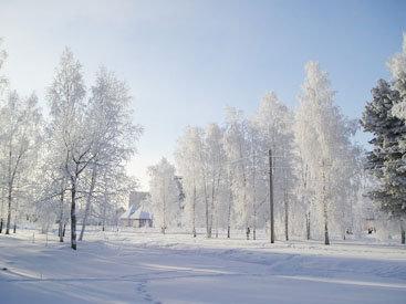 Снежная гладь и оттенки зимы - ФОТОСЕССИЯ