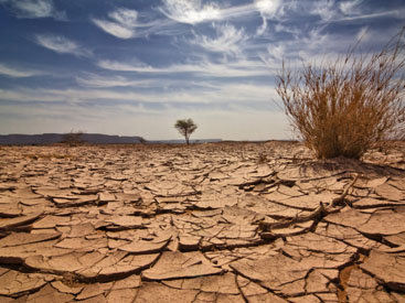 КНДР переживает самую сильную засуху за век